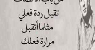 بالصور كلام زعل من الحبيب , كلمات زعل و عتاب للحبيب 863 12 310x165
