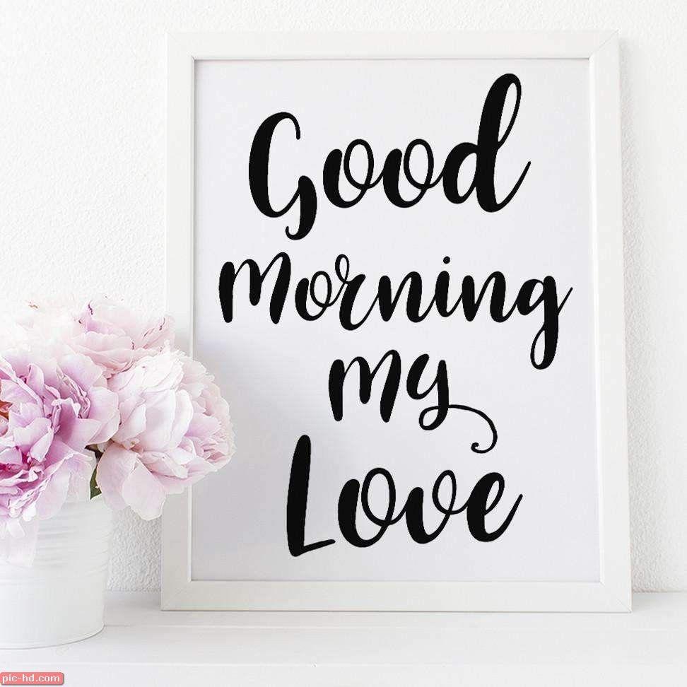 بالصور صباح الورد حبيبي , صور صباح الحب و الورد للحبيب 885 1