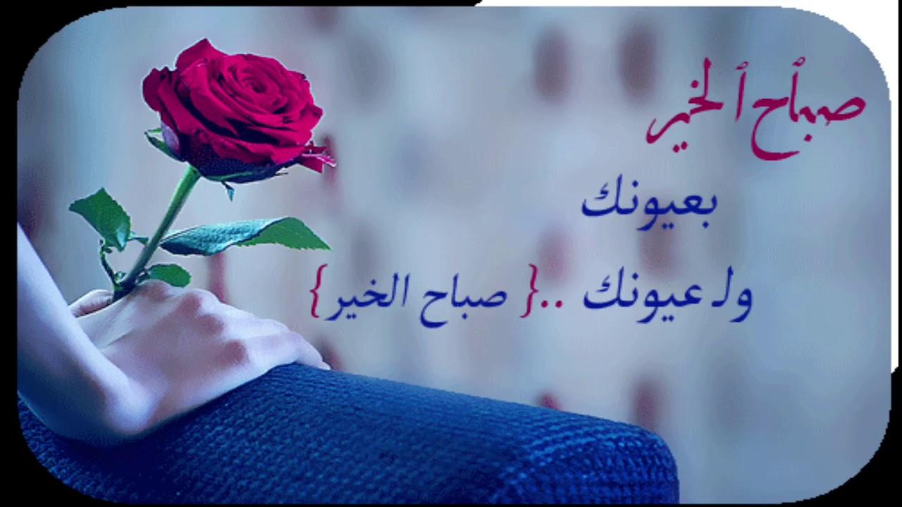 بالصور صباح الورد حبيبي , صور صباح الحب و الورد للحبيب 885 6