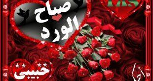 صوره صباح الورد حبيبي , صور صباح الحب و الورد للحبيب