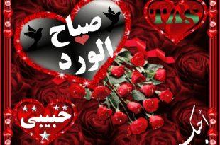 بالصور صباح الورد حبيبي , صور صباح الحب و الورد للحبيب 885 9 310x205