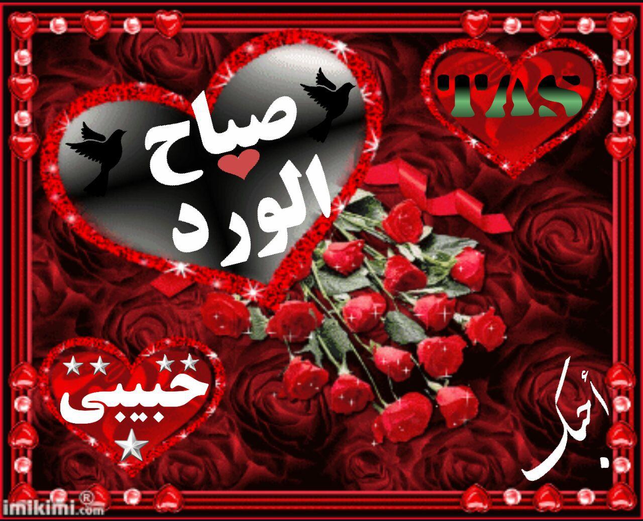 صباح الورد حبيبي صور صباح الحب و الورد للحبيب قلوب فتيات