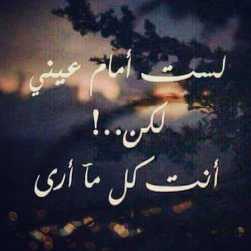 بالصور صور كلام حب , رمزيات كلمات حب و عشق 940 6