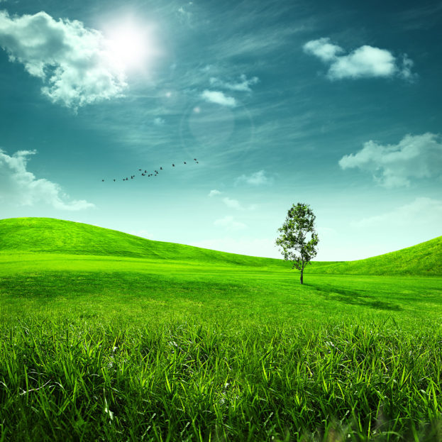 بالصور خلفيات طبيعية ساحرة , شاهد جمال الطبيعة الخلاب 6413 11