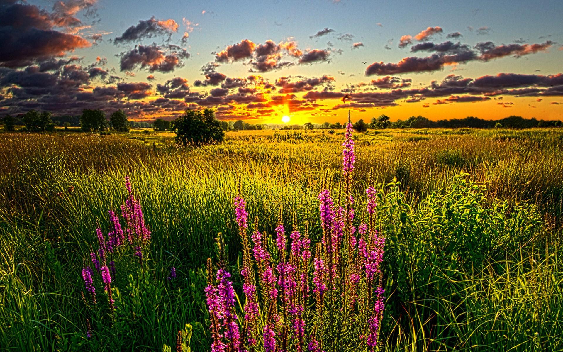 بالصور خلفيات طبيعية ساحرة , شاهد جمال الطبيعة الخلاب 6413 8