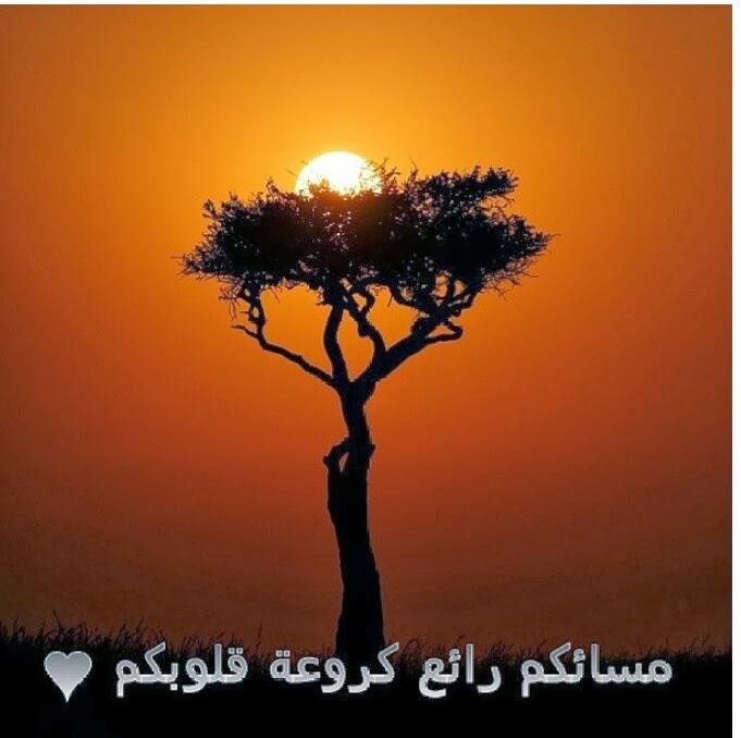 بالصور مساء الخير حبيبي , اروع ما قيل عن المساء 6414 7