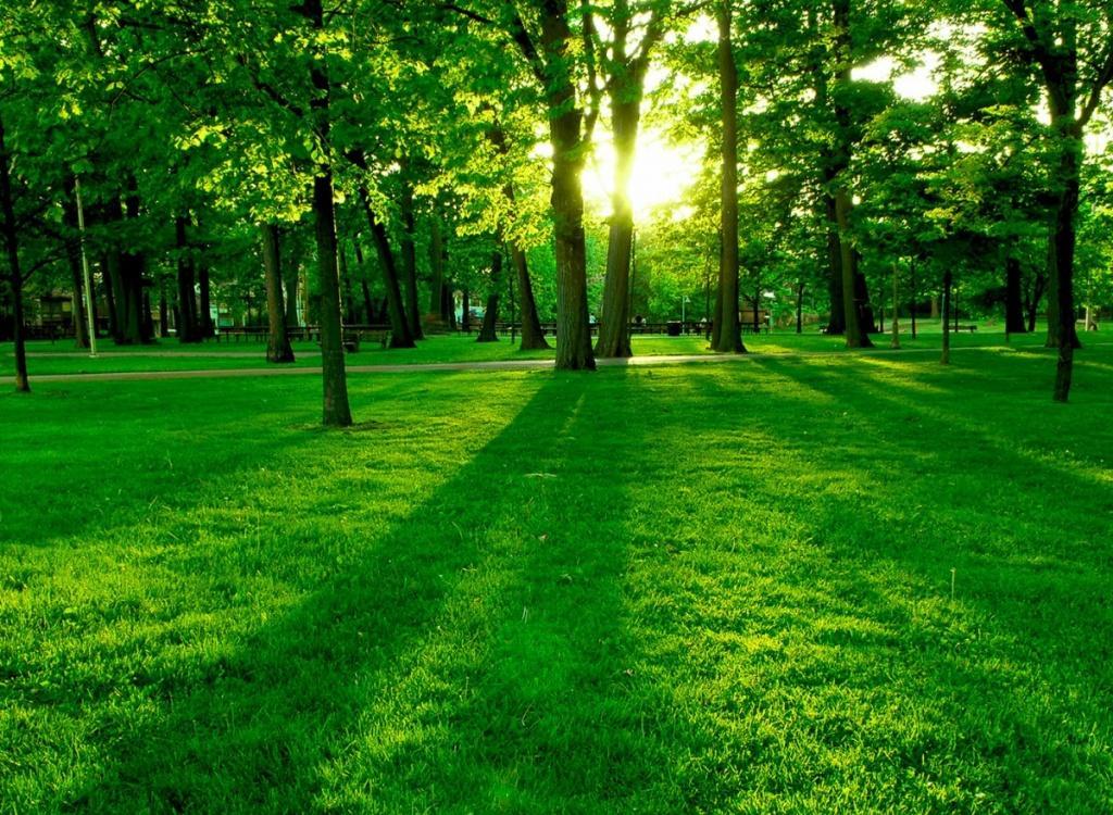 بالصور صور الجمال , اروع ما رات عينى من جمال الطبيعة 6481 7