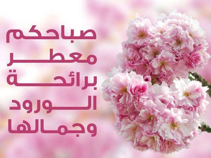 بالصور كلمات الصباح للاصدقاء , اجمل العبارات الصباحية للاصدقاء 6633 5