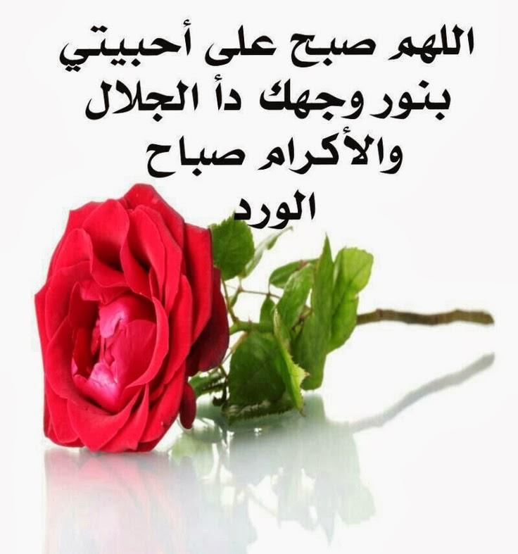 بالصور كلمات الصباح للاصدقاء , اجمل العبارات الصباحية للاصدقاء 6633 8