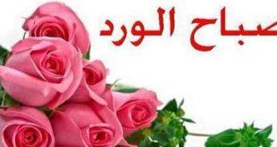بالصور كلمات صباحية للحبيب , صباحك حب يا حبيبي 4808 12 310x165