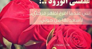 صور حكم عن الورد , عبارات فى جمال الورد
