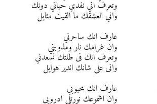 بالصور شعر ليبي عن الحب , اشعار ولا اروع من ليبيا 377 11 310x205