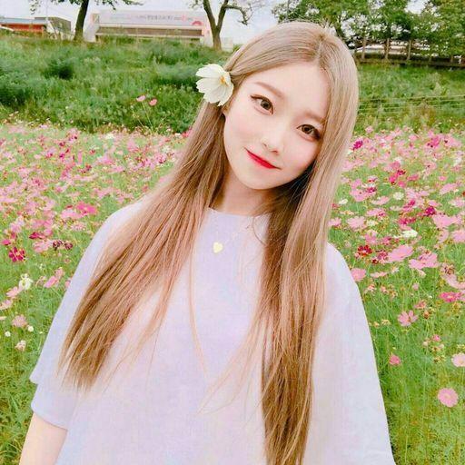 صورة صور بنات كوريات كيوت , اجمل صور فتيات بكوريا 12135 1