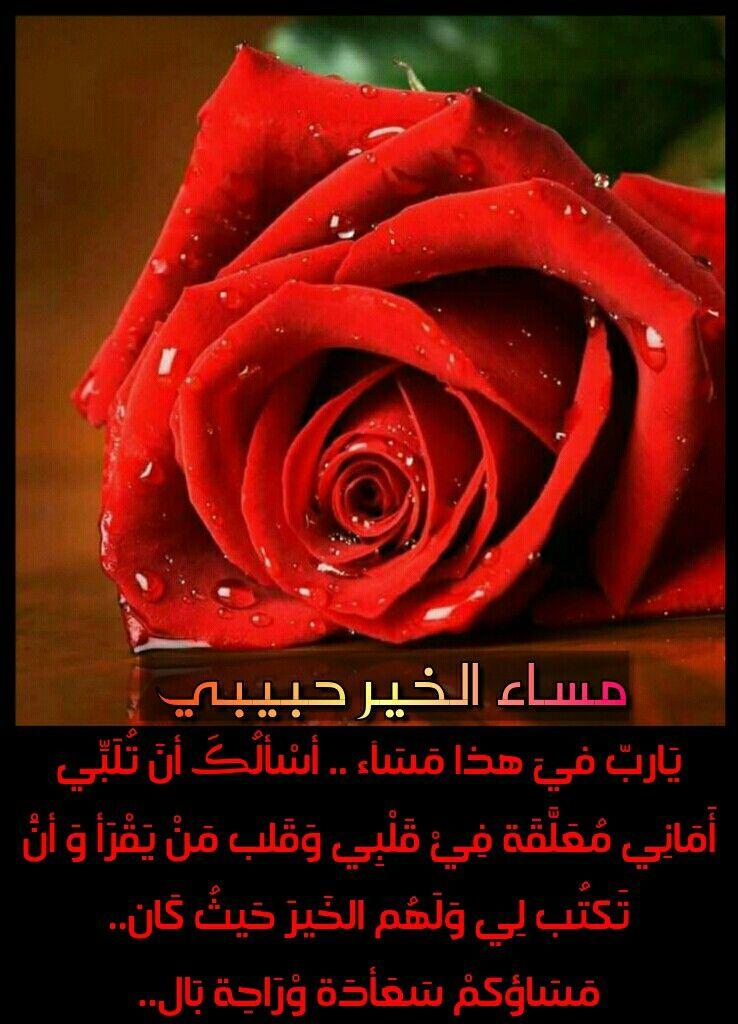 صور مساء الخير حبيبتي مسجات , اجمل رسايل مسائية للحبيبة