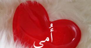 بالصور عبارات عن عيد الام مع الصور , مقولات مميزة لعيد الام بالصور 12239 2 310x165