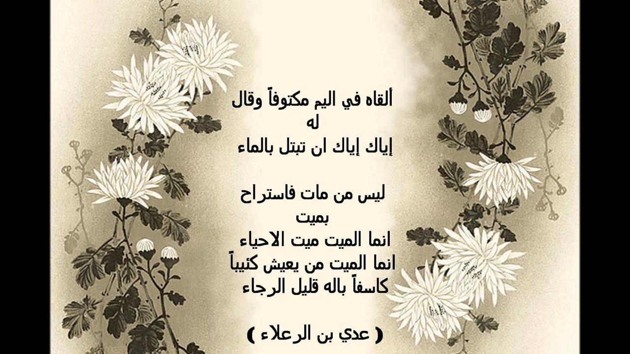 بالصور اروع ما قيل في الشعر العربي , اجمل واحلي قصايد الشعر العربي 12376