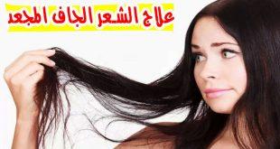 صورة خلطات مبهرة للشعر الجاف , اجمل الخلطات لترطيب الشعر الجاف