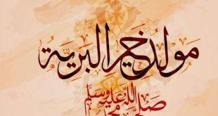 صورة صور عن المولد النبوي الشريف , الاحتفال بالمولد النبوي