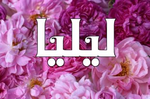 صورة معنى اسم ليليا , ما هى صفات حاملة اسم ليليا