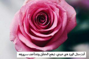 صورة خواطر عن الورد , اجمد الخواطر عن الورد