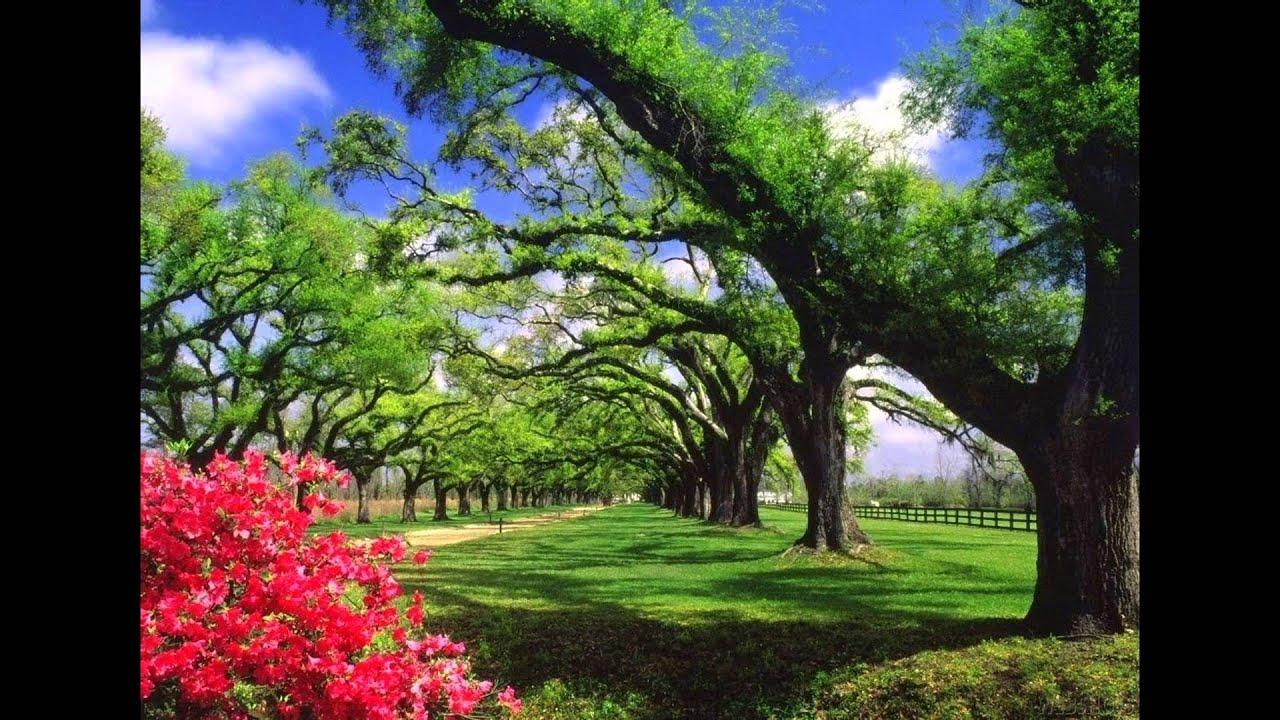 صورة صور تحفة طبيعية ايه الجمال ده، اجمل الصور الطبيعية في العالم 5901 8