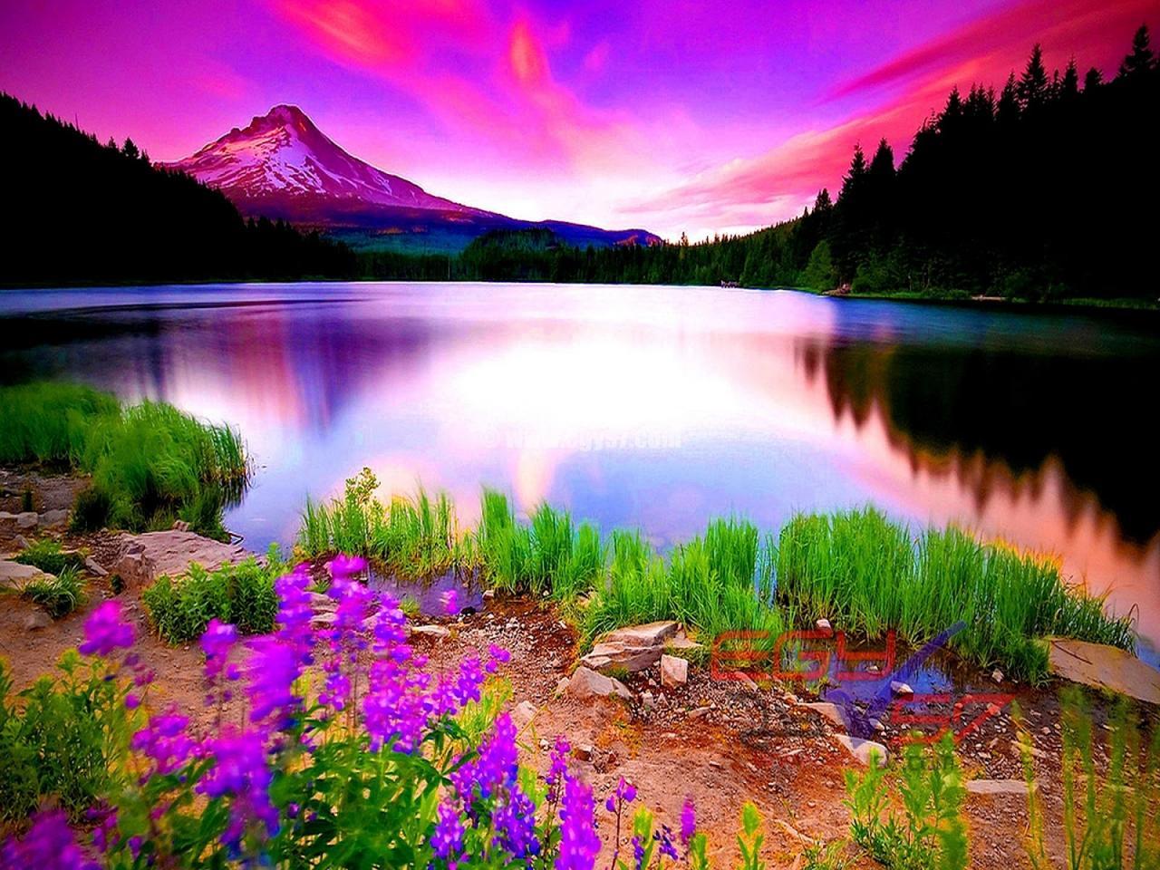 صورة صور تحفة طبيعية ايه الجمال ده، اجمل الصور الطبيعية في العالم 5901