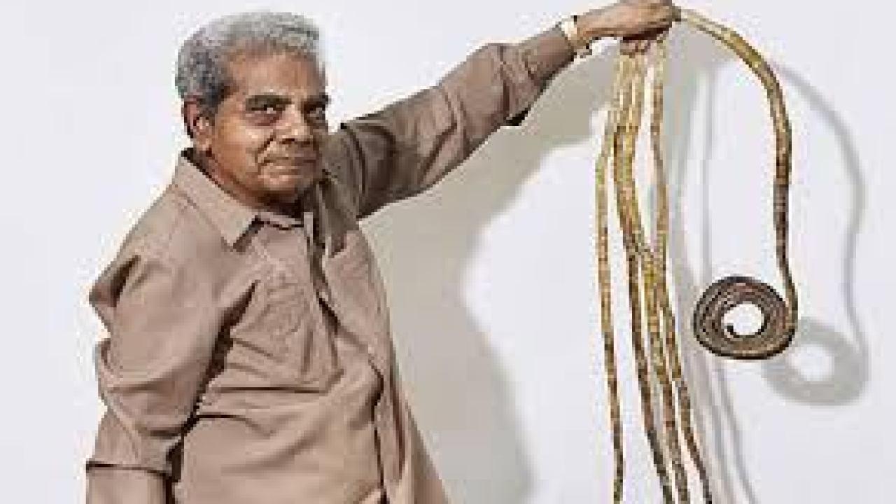 صورة من هو صاحب اطول اظافر هقلك , اطول اظافر في العالم 5815 8