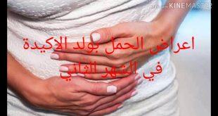 علامات الحمل بولد في الشهر الثاني